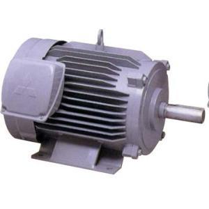 三菱電機 SF-JR 0.4kw 4P 200V モータ SF-JRシリーズ(三相・全閉外扇形)|dendouki2