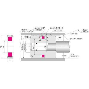 NOK パッキン SPG-120 (GS0350V0) ピストンシール専用パッキン SPG型|dendouki2