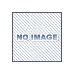 フォーシェダ Vリング V-100A ニトリルゴム(NBR)|dendouki