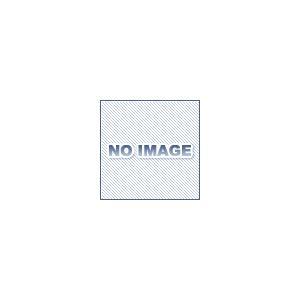 ハンマーキャスター 4152EN-UR125 ウレタン dendouki