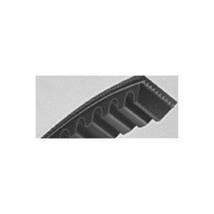 三ツ星ベルト スーパーゴールド1000コグ RCLC-45 (後継同等品 スーパーAGコグ4 RCLC-45)|dendouki