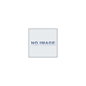 椿本チエイン RS50-74LINK