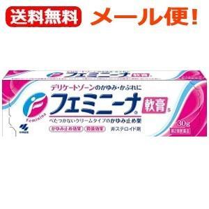【第2類医薬品】【メール便対応!送料無料!】フェミニーナ軟膏S 30g【軟膏剤】
