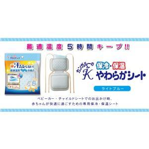 【丹平製薬】保冷保温やわらかシート  ライトブルー|denergy