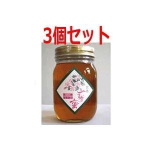 【有限会社 ハニー松本】会津産はちみつ 山桜の蜜 200g【3個セット】|denergy