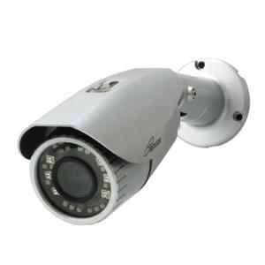 コロナ電業 屋外用カメラ(オートフォーカス&ズーム、赤外線投光) TR-H220VZ|denking