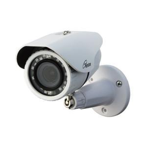 コロナ電業 屋外用カメラ(オートフォーカス&ズーム、赤外線投光) TR-H210VZ|denking