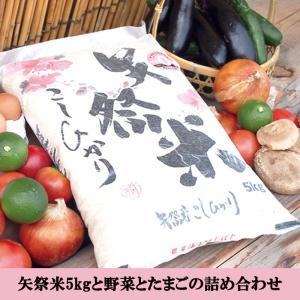 矢祭米5kgと野菜とたまごの詰め合わせ|denpata