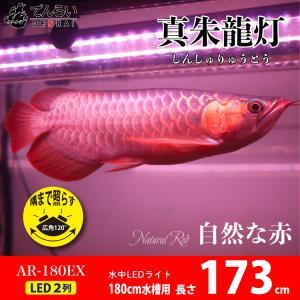赤い魚がより赤く見えるよう研究し開発された照明です。  水中から横向きに真っ赤なLEDを当て、 鱗の...