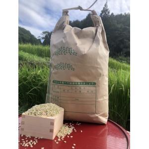 【玄米5kg】愛媛 自家農園減農薬栽培あきたこまち!令和元年産/新米/米
