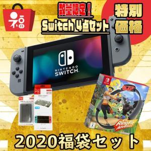 福袋 2020 Nintendo Switch Joy-Con (L) / (R) (ネオンレッド/ブルー or グレー)新型 本体 印付きの場合あり リングフィット アドベンチャー|densidonya