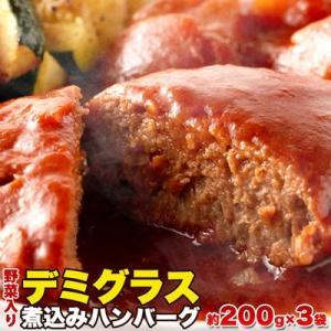 天然生活 SM00010334 【ゆうパケット出荷】野菜入りデミグラス煮込みハンバーグ約200g×3袋|dentarou