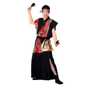 よさこいコスチューム 上衣 =よさこい衣装 YOSAKOIソーラン よさこい祭り= (73094) dento-wako