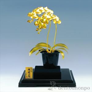 花は今昔を問わず人の心をなごませ、ゆとりを感じさせてくれます。特に洋蘭は人気が高く、中でもファレノプ...