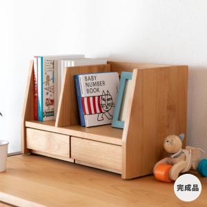 ブックスタンド 本棚 本立て STEP BOOK STAND 45 (AL-NA) -ステップ 45ブックスタンド 単品- (ISSEIKI 一生紀) denzo