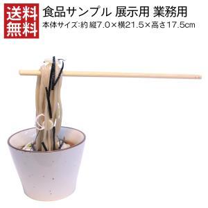 食品サンプル 展示用 ざるそば そばちょこ 浮かせ盛り 皿付き 店舗用品 日本製 高品質 職人 手づくり 業務用 送料無料|designpocket