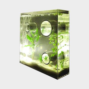 キャッシュレス還元 アクアリウム 水槽 private agualium 標準サイズ|designshop-jp