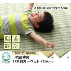 日本製 洗えるPPカーペット 雲海ヒバ GN江戸間 4.5畳 ike-4497599s9 designstyle