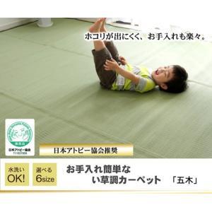 日本製 洗えるPPカーペット 五木 江戸間 4.5畳 ike-4497625s3 designstyle