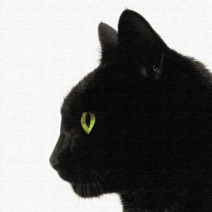 黒猫 アートボード アートパネル アートデリ Mサイズ 30cm×30cm lib-5109079s1 designstyle