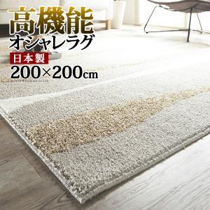 ラグ 〔アクア〕 200x200cm mu-33100298|designstyle