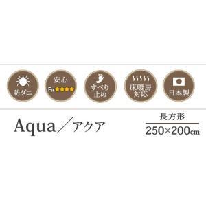 ラグ 〔アクア〕 250x200cm mu-33100299|designstyle|03