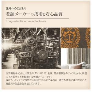 ラグ 〔アクア〕 250x200cm mu-33100299|designstyle|09