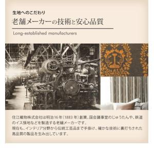 玄関マット 〔ブランシュ〕 75x45cm mu-33100409|designstyle|10
