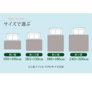 ラグマット・カバー 〔モリス〕 1畳用(190x100cm)+ホットカーペット本体セット mu-i-2000033 designstyle 12