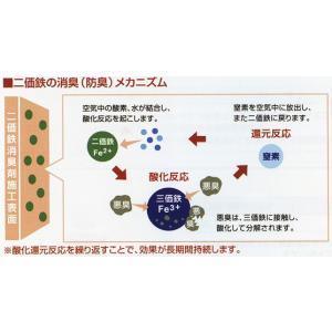 NISSAN 日産 PITWORK ピットワーク 内装関連 室内防臭 ロングタイプ 液剤 500ml|desir-de-vivre|02