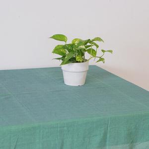マルチカバー 玉露 W225 D150|desirdevivre-zacca