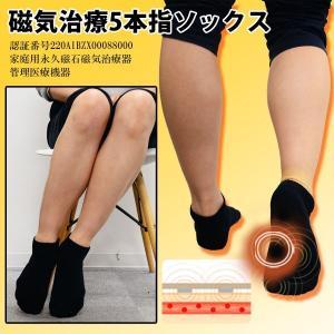 バレエ 磁気 靴下 磁気治療5本指ソックス  靴下(大人用バレエウェア) ドゥッシュドゥッスゥ dessus-y