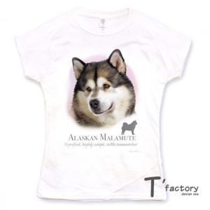 【レディース】アラスカンマラミュート 犬 動物Tシャツ【Lサイズ】|dgmode