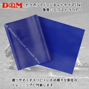D&M ディーアンドエム セラバンド ワンカットサイズ 2m ブルー|diamond-sports