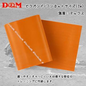 D&M ディーアンドエム  セラバンド ワンカットサイズ 2m ゴールド|diamond-sports