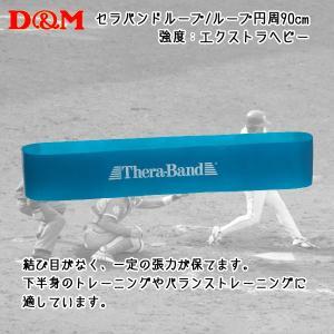 D&M ディーアンドエム  セラバンドループ 90cm ブルー|diamond-sports