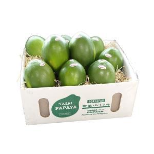 フィリピン産 青パパイヤ 野菜 8~12玉入り green papaya 酵素たっぷり!