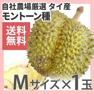 ドリアン モントーン種 タイ産 1玉 生鮮 1.4kg〜2kg