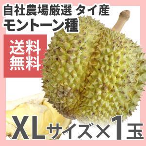 ドリアン モントーン種 タイ産 1玉 生鮮 約3kg