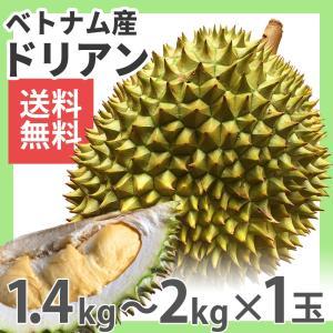 ドリアン ベトナム産 1玉 1.4kg〜2kg 生鮮 フレッシュ 果物