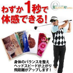 ゴルフ 健康 バランス調整 改善 バランスEカード100 ダイエット AC-BEC100