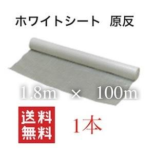 養生 ブルーシート 白 ロール 1800 ホワイトシートロール 養生ホワイトシート ホワイトシート 1.8×100 1本 ホワイト|dicedice