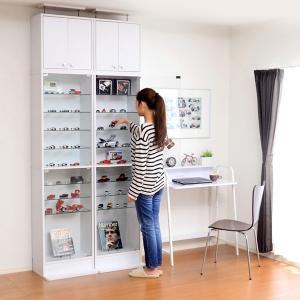 コレクションケース コレクション 棚 ミニカー コレクション|dicedice