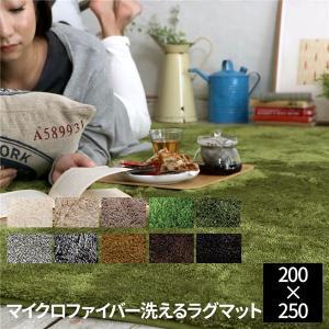<title>専門店 EXマイクロファイバー洗えるラグマット 200×250cm セピア〔代引不可〕</title>