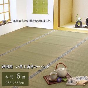 <title>純国産 日本製 糸引織 公式 い草上敷 本間6畳 約286×382cm 柿田川</title>