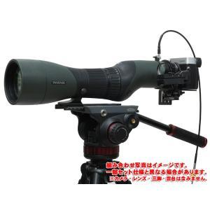 デジスコ SWAROVSKI STX85/LUMIX G20mmF1.7II  セットC [カメラ(レンズ)、メモリーカード、三脚、雲台、ロングプレート抜き]|digisco-ya