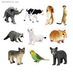 送料無料◆My Little Zoo -ぼくの わたしの てのひら動物園- 10種セットB 初回生産分(ライケン付き) プラッツ/MOJO(ZF54091) digitamin