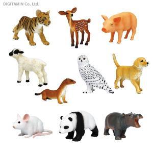 送料無料◆My Little Zoo -ぼくの わたしの てのひら動物園- 10種セットC 初回生産分(ライケン付き) プラッツ/MOJO(ZF54092) digitamin