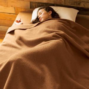 ダブル(洗える100%ナチュラルキャメルお得な掛け毛布&敷き毛布セット) 725447