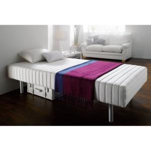 老舗フランスベッドの心地よい睡眠にこだわるあなたに。 少し硬めのマルチラススプリングベッドを収納もで...